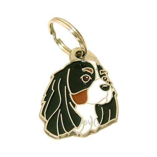 M dailles grav es pour chiens mjavhov magasin en ligne for Laser spit cl 30 prix